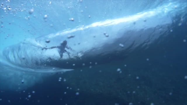 vídeos de stock, filmes e b-roll de surfer surfing waves on a surfboard underwater. - slow motion - coragem