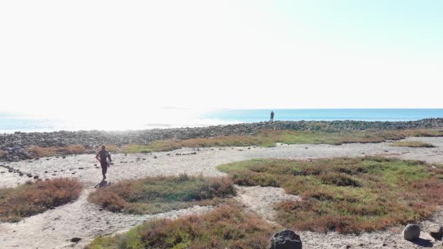 surfer - penisola di bassa california video stock e b–roll