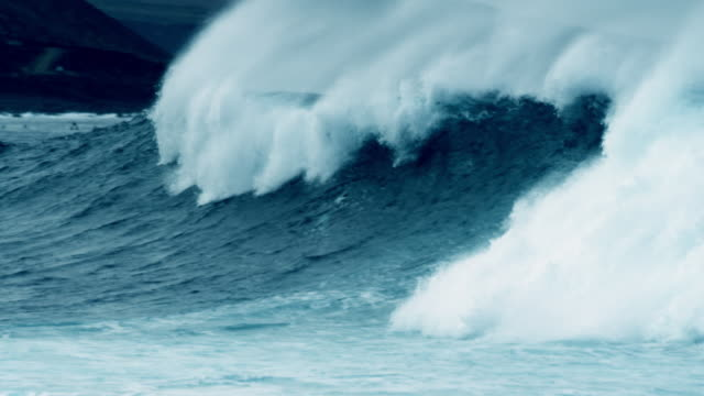surfer - power in nature stock videos & royalty-free footage