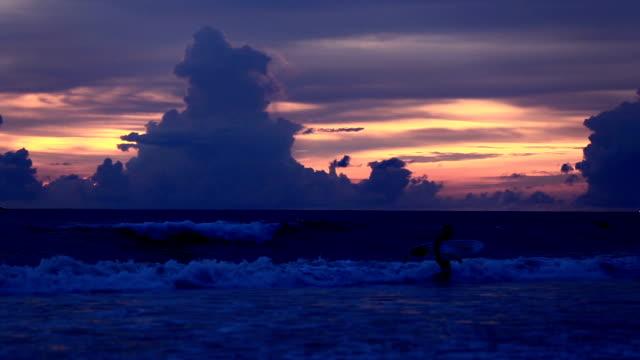 surfer zu fuß zum meer - badeshorts stock-videos und b-roll-filmmaterial