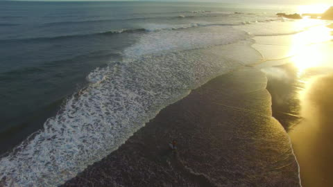 a surfer walks out into the water at sunset at balian beach, bali. - walking in water stock videos & royalty-free footage