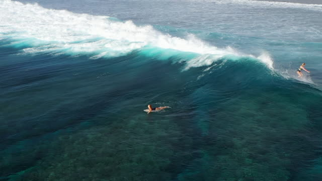 surfer woman riding on the blue ocean, slow motion - swimming costume stock videos & royalty-free footage