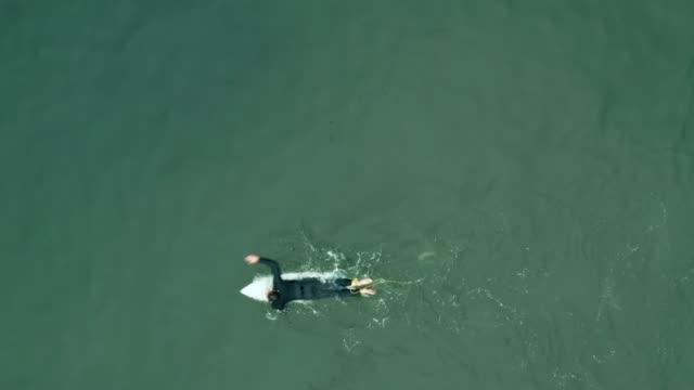 surfers and pedestrians at huntington beach pier - aerial drone shot - huntington beach california stock videos and b-roll footage