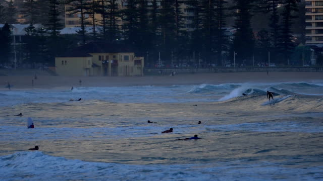 Surfers at Manly Beach