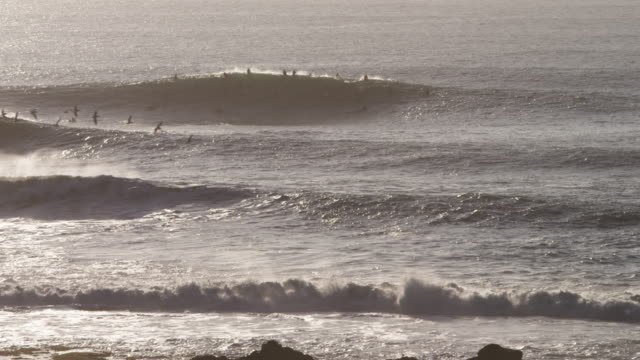 80 Top Mavericks California Video Clips and Footage - Getty