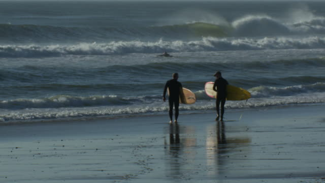 Surfers carry their boards to the water.