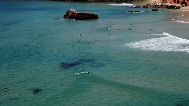 surfer in sagres beach auf die küste der algarve - algarve stock-videos und b-roll-filmmaterial