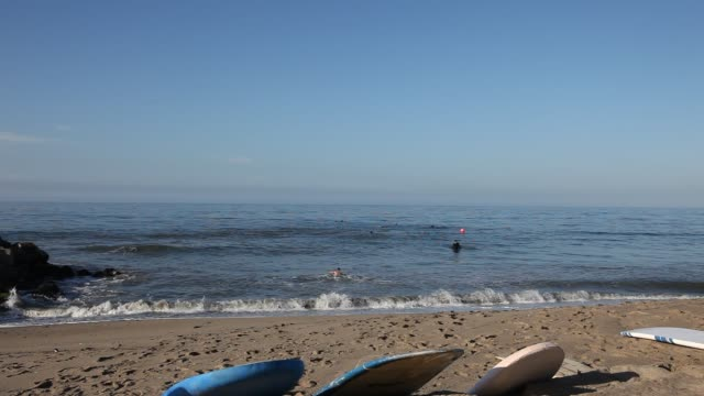 Surfers on the beach of Malibu with their surfboards in Los Angeles California USA
