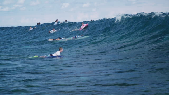 vidéos et rushes de surfers on wave in slow motion - dom tom