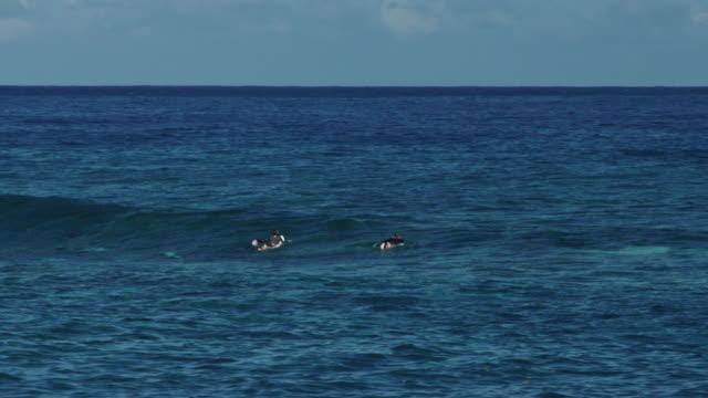 vídeos de stock e filmes b-roll de surfers paddle in ocean, wide shot - territórios ultramarinos franceses