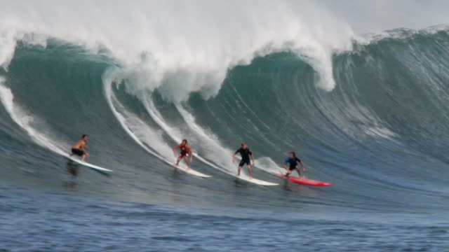 MS TS Surfers riding on waimea bay  / Haleiwa, Hawaii, United States