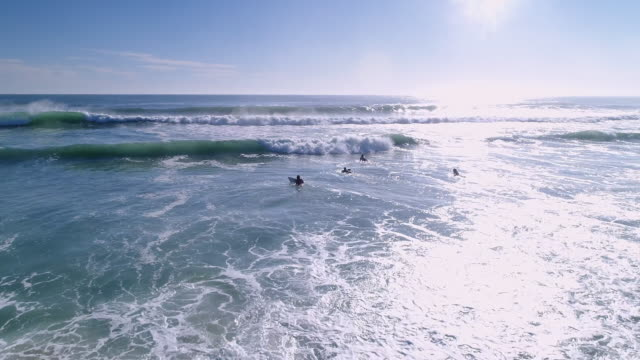 Surfers surfing in the sea