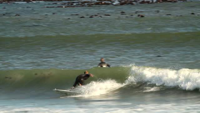 vidéos et rushes de surfers surfing waves in cape town, south africa. cape town is home to the iconic table mountain and is known for it's beaches and summer lifestyle. - le cap