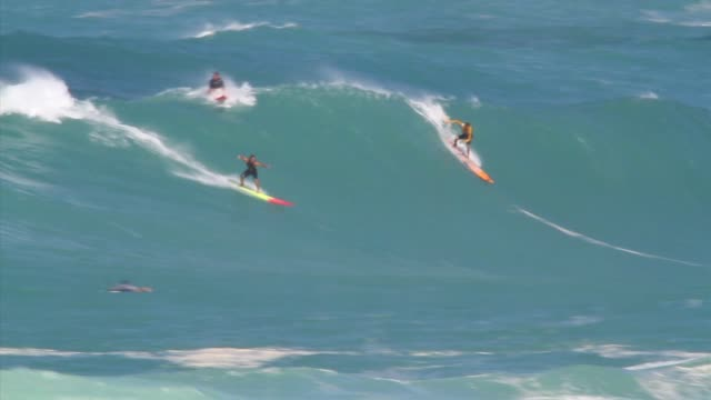 surfers take on the challenge of the big waves on the north shore of oahu in the hawaiian island one wave shot two surfing shots - salmini stock videos & royalty-free footage