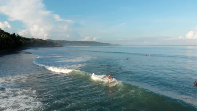 surfing in costa rica - costa rica stock videos & royalty-free footage