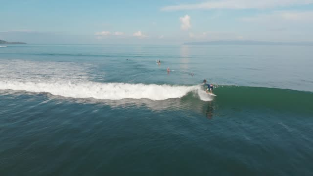 surfing in costa rica - board shorts stock videos and b-roll footage