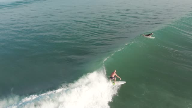 surfing in costa rica - shorts stock videos & royalty-free footage
