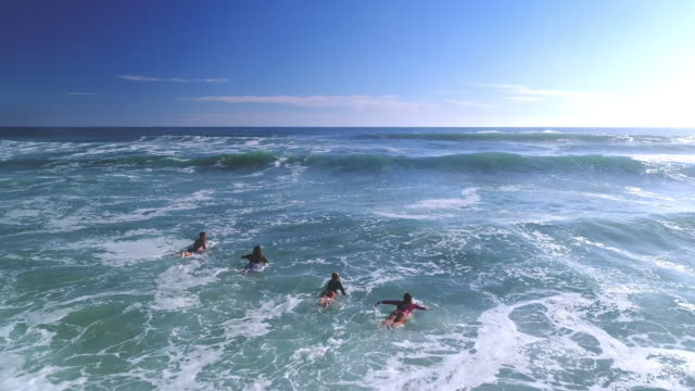 surfing in the ocean - surfboard stock videos & royalty-free footage