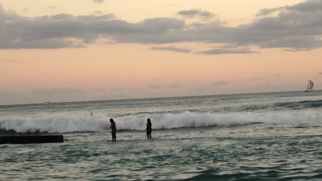 Surfing in the sunset at Honolulu beach, Hawaii USA