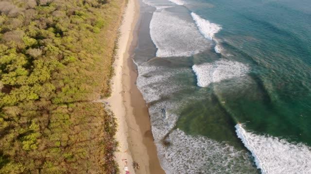 surfen in playa grande - costa rica stock-videos und b-roll-filmmaterial