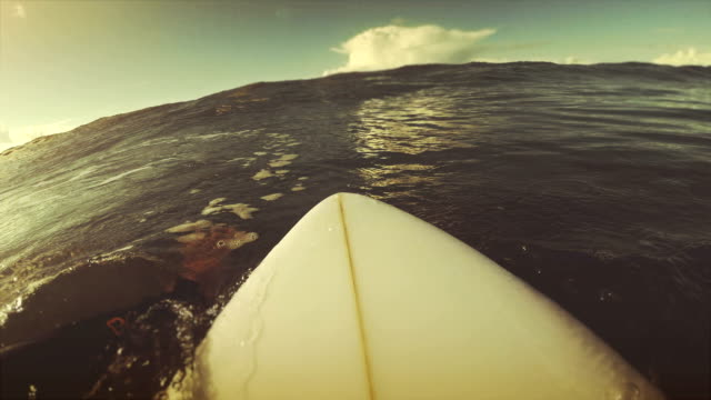 surfing pov with action camera - using a paddle stock videos & royalty-free footage