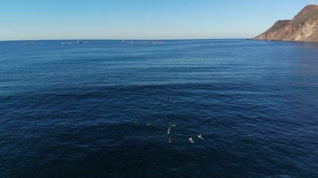 surfing - baja california peninsula stock videos & royalty-free footage