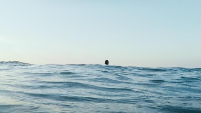 vídeos y material grabado en eventos de stock de surfing woman in atlantic ocean on summer evening on surfboard at sunset - anticipación