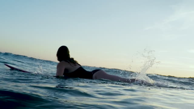 Surfing women in Atlantic ocean on summer evening on surfboard at sunset