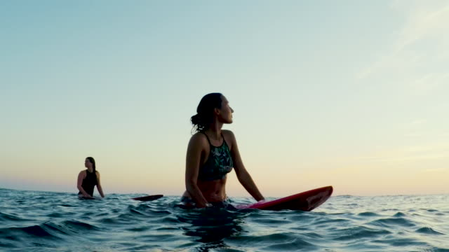 surfing women in atlantic ocean on summer evening on surfboard at sunset - surfboard stock videos & royalty-free footage