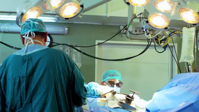 Cirurgiões operar um paciente