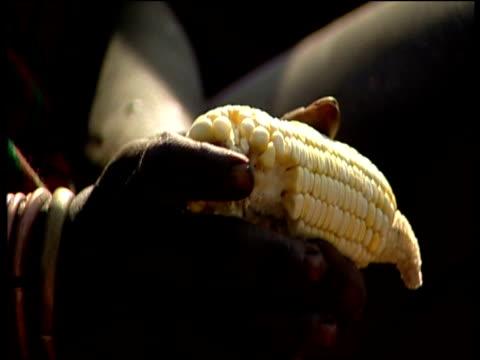 suri female picks maize kernels before grinding with rock ethiopia - アフリカの角点の映像素材/bロール