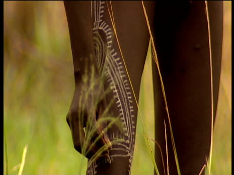 suri males prepare for donga stick fighting contest by decorating themselves with brightly coloured clothing and clay tattoos suri territory ethiopia - human limb stock videos & royalty-free footage