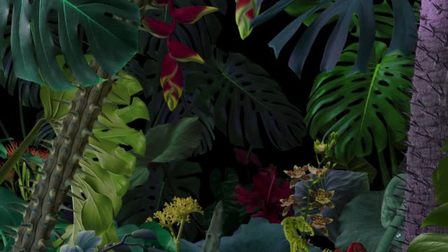 surreal animated night jungle background - foglia video stock e b–roll