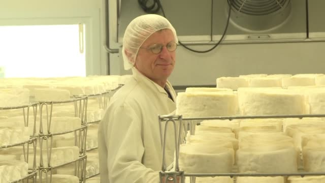 surrounded by mottled brown and white cows basking in the normandy spring sunshine patrick mercier admits his prized raw-milk camembert doesn't come... - raw milk stock videos & royalty-free footage