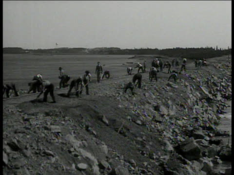 survey 'cwa fera wpa pw' ws workers digging dike ms lowering pipe piece into ditch ms man lowering pipe franklin roosevelt's new deal program - franklin roosevelt stock videos & royalty-free footage