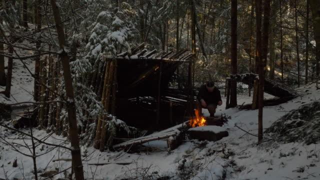 冬の森でサバイバル - winter点の映像素材/bロール