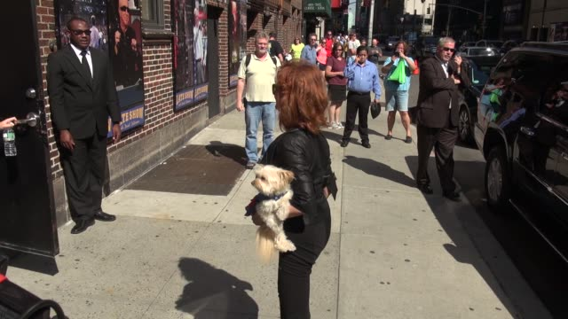 susan sarandon carrying her dog going into the late show with david letterman in celebrity sightings in new york, - スーザン・サランドン点の映像素材/bロール