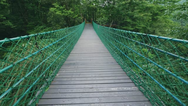suspension bridge in forest - footbridge stock videos & royalty-free footage
