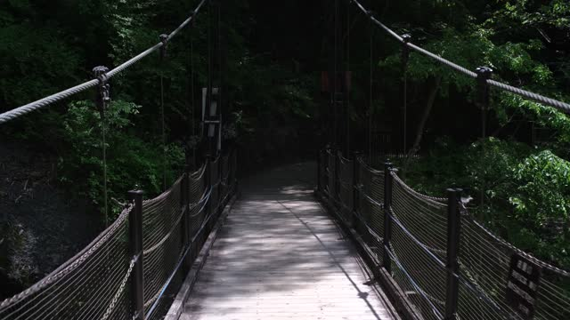 vídeos de stock e filmes b-roll de suspension bridge - ponte suspensa