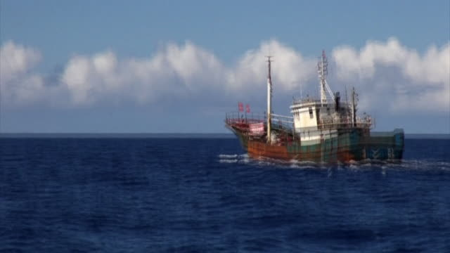 a suspicious fishing vessel seen within the area of japanese waters where chinese illegal coral poachers are active in - suspicion stock-videos und b-roll-filmmaterial
