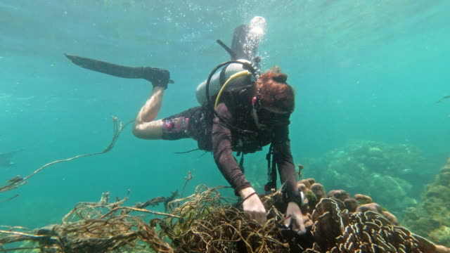 sustainable lifestyle eco tourist scuba dive vacation friends volunteering to remove discarded fishing net from underwater coral reef - underwater diving stock videos & royalty-free footage