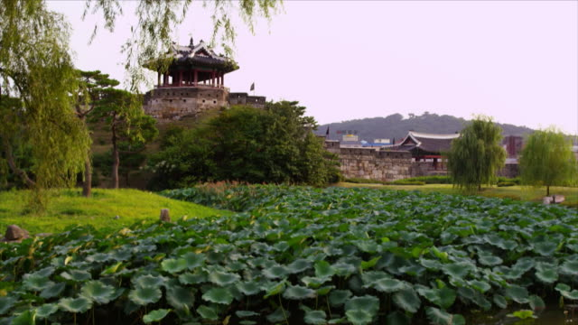suwon hwaseong fortress (unesco heritage site) - hwaseong palace stock videos and b-roll footage
