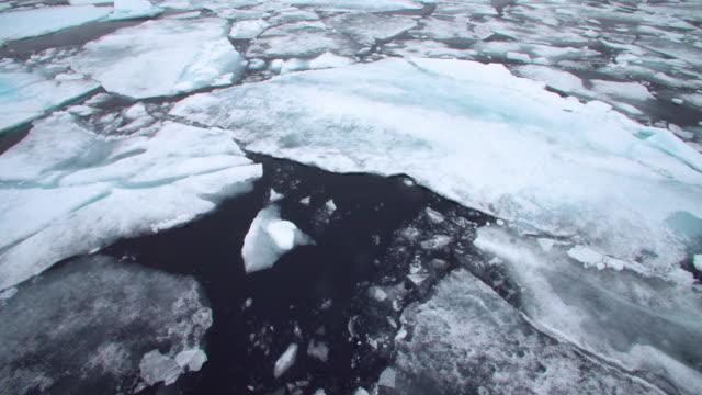 Svalbard icebergs 2