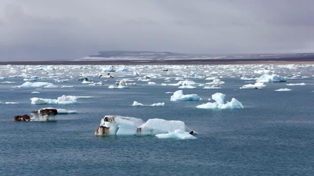Svalbard icebergs