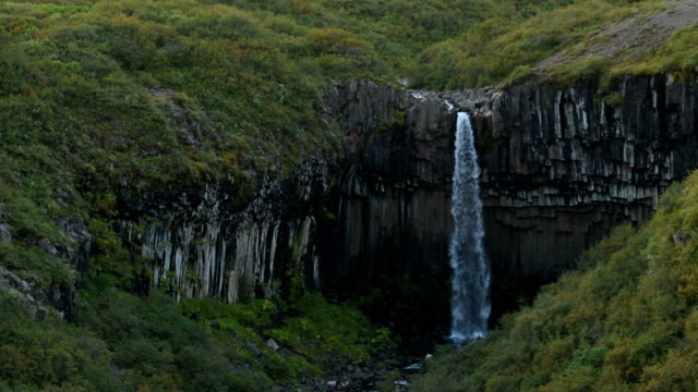 svartifoss waterfall in iceland - falling water stock videos & royalty-free footage