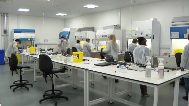 swab samples being tested for coronavirus in a milton keynes 'megalaboratory' - scientific experiment stock videos & royalty-free footage