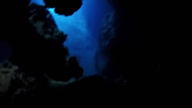 swallow's cave in tonga is a natural formation in the side of one of the islands of vava'u. formed by volcanic activity, these beautiful islands are... - undersea video stock e b–roll