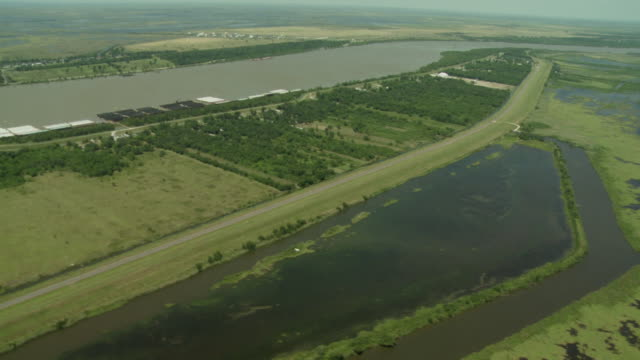 swamps surround the mississippi river. - river mississippi stock videos & royalty-free footage
