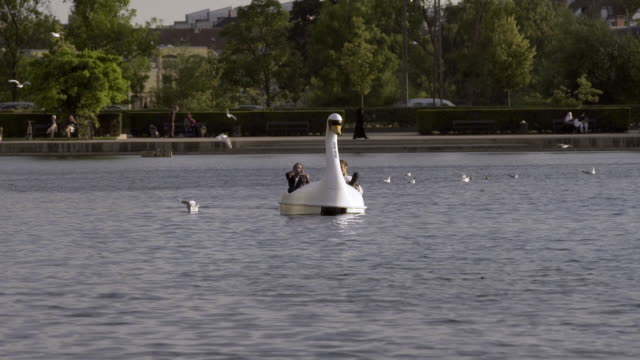 swan boat in copenhagen - pedal boat stock videos and b-roll footage