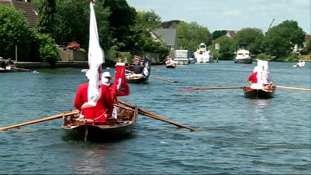 swan upping on river thames; england: surrey: ext various of swans being carried by volunteers and returned to river thames during swan upping close... - aquatic organism stock videos & royalty-free footage